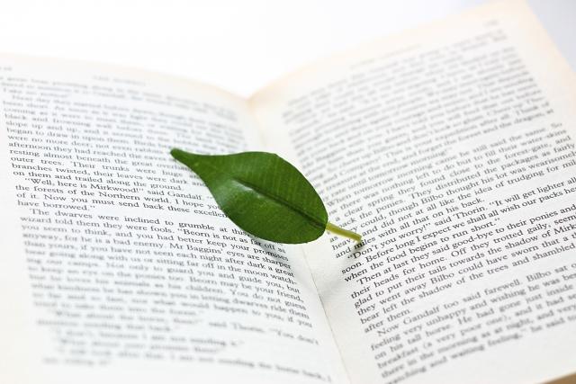 葉っぱと本